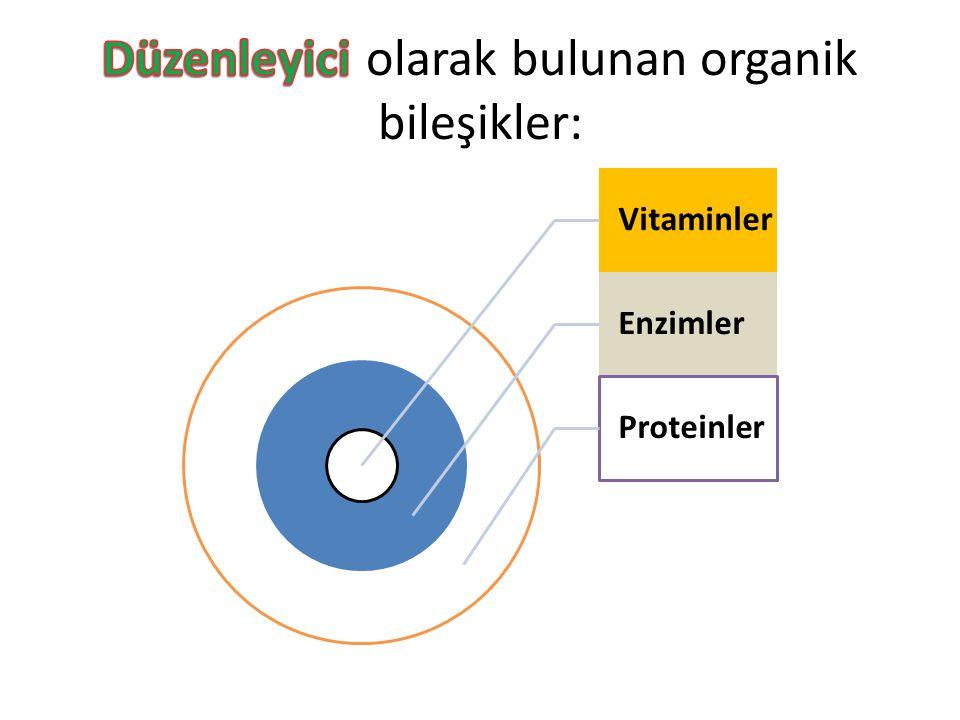 Vitaminler Enzimler Proteinler