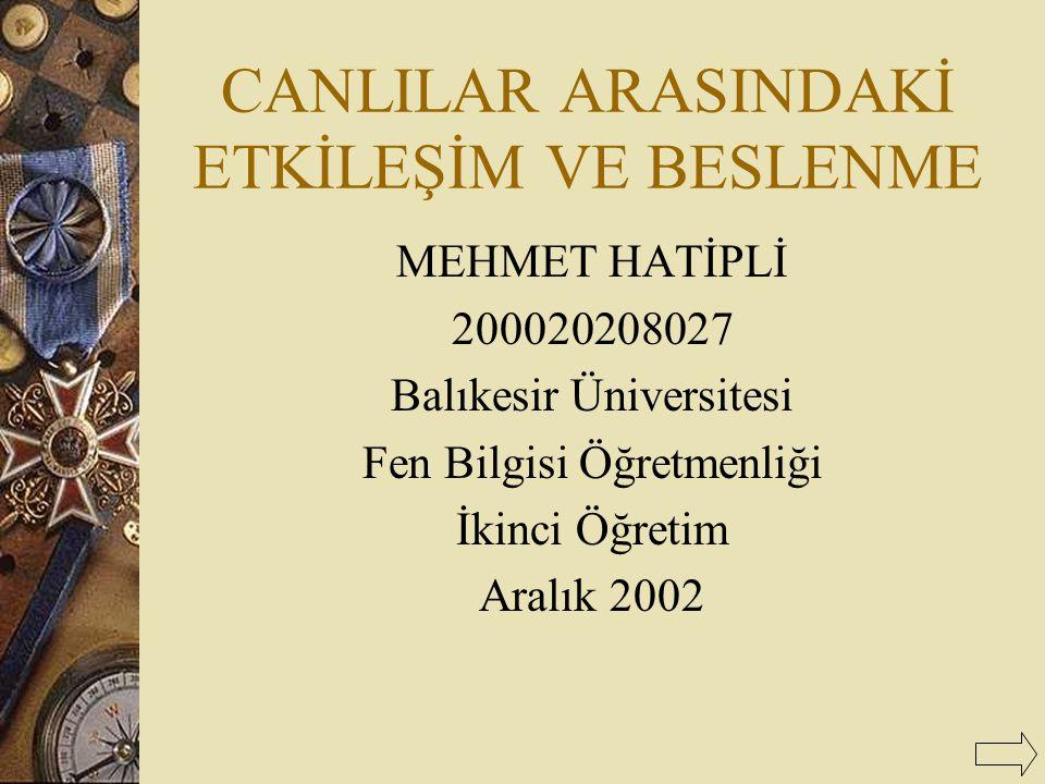 CANLILAR ARASINDAKİ ETKİLEŞİM VE BESLENME MEHMET HATİPLİ 200020208027 Balıkesir Üniversitesi Fen Bilgisi Öğretmenliği İkinci Öğretim Aralık 2002