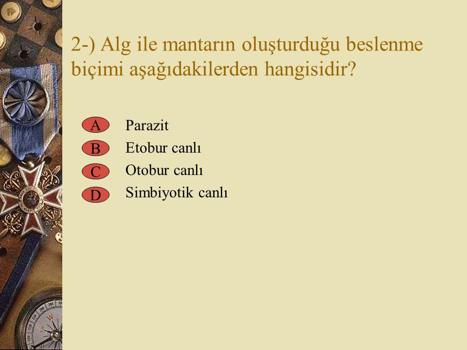 2-) Alg ile mantarın oluşturduğu beslenme biçimi aşağıdakilerden hangisidir? Parazit Etobur canlı Otobur canlı Simbiyotik canlı A B C D