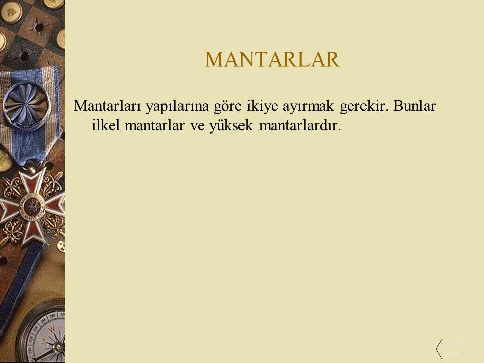 MANTARLAR Mantarları yapılarına göre ikiye ayırmak gerekir. Bunlar ilkel mantarlar ve yüksek mantarlardır.
