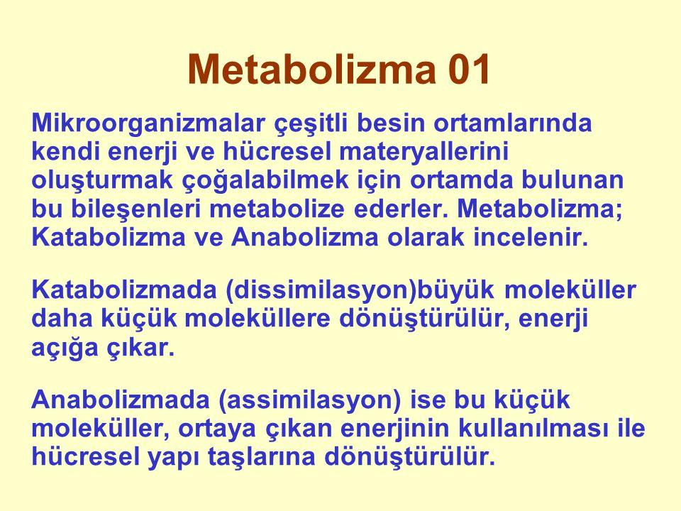 Metabolizma 01 Mikroorganizmalar çeşitli besin ortamlarında kendi enerji ve hücresel materyallerini oluşturmak çoğalabilmek için ortamda bulunan bu bi