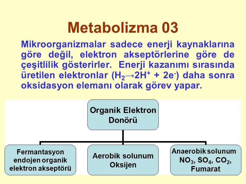 Metabolizma 03 Mikroorganizmalar sadece enerji kaynaklarına göre değil, elektron akseptörlerine göre de çeşitlilik gösterirler. Enerji kazanımı sırası