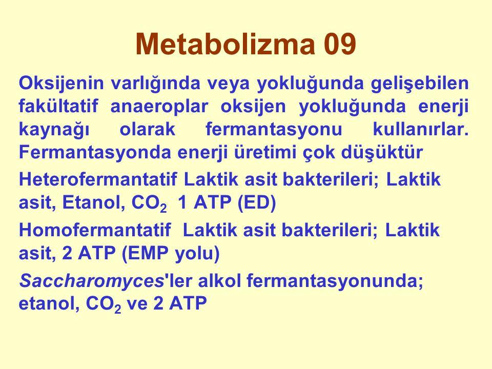 Metabolizma 09 Oksijenin varlığında veya yokluğunda gelişebilen fakültatif anaeroplar oksijen yokluğunda enerji kaynağı olarak fermantasyonu kullanırl