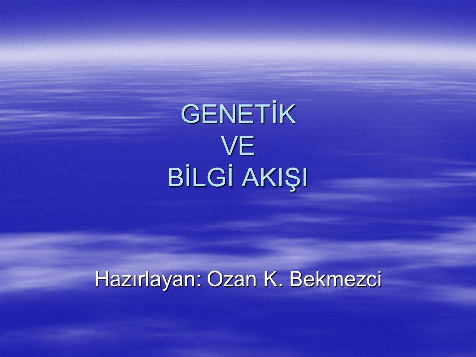 GENETİK VE BİLGİ AKIŞI Hazırlayan: Ozan K. Bekmezci