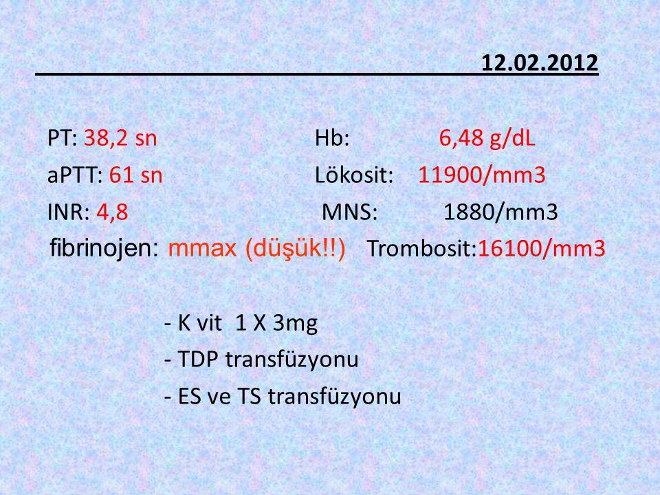 12.02.2012 PT: 38,2 sn Hb: 6,48 g/dL aPTT: 61 sn Lökosit: 11900/mm3 INR: 4,8 MNS: 1880/mm3 fibrinojen: mmax (düşük!!) Trombosit:16100/mm3 - K vit 1 X