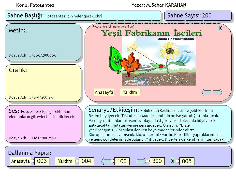 Yazar: M.Bahar KARAHAN Konu: Fotosentez Metin:.Dosya Adı:../doc/200.doc Metin:.