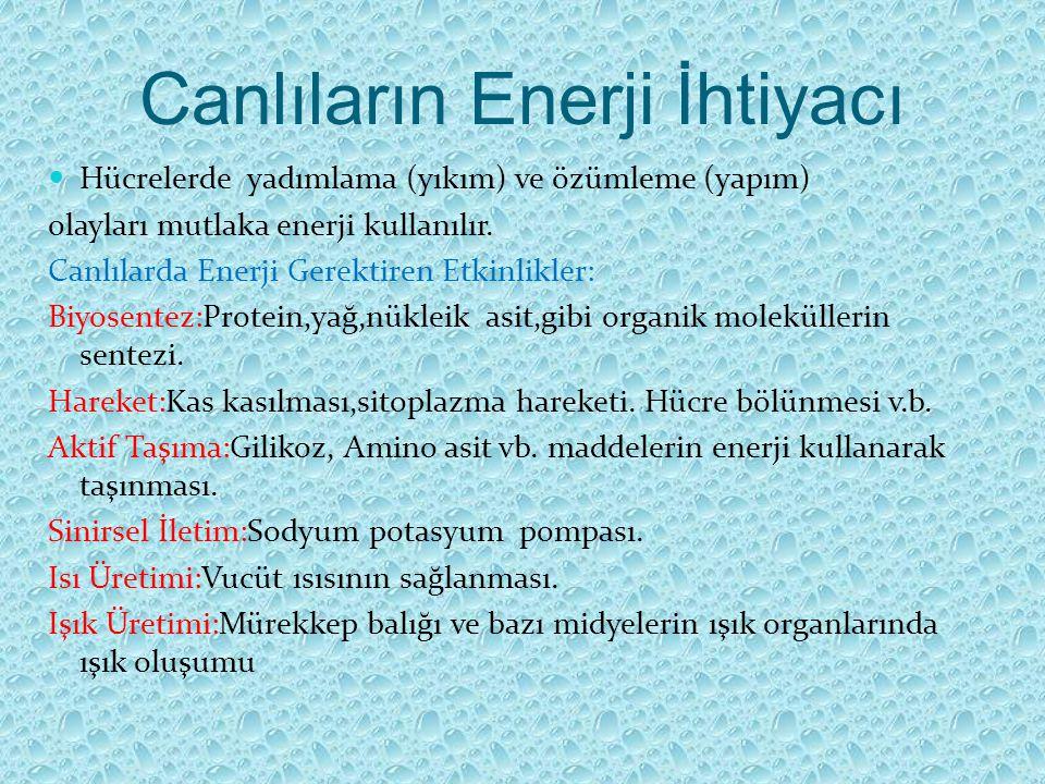 Canlıların Enerji İhtiyacı Hücrelerde yadımlama (yıkım) ve özümleme (yapım) olayları mutlaka enerji kullanılır. Canlılarda Enerji Gerektiren Etkinlikl