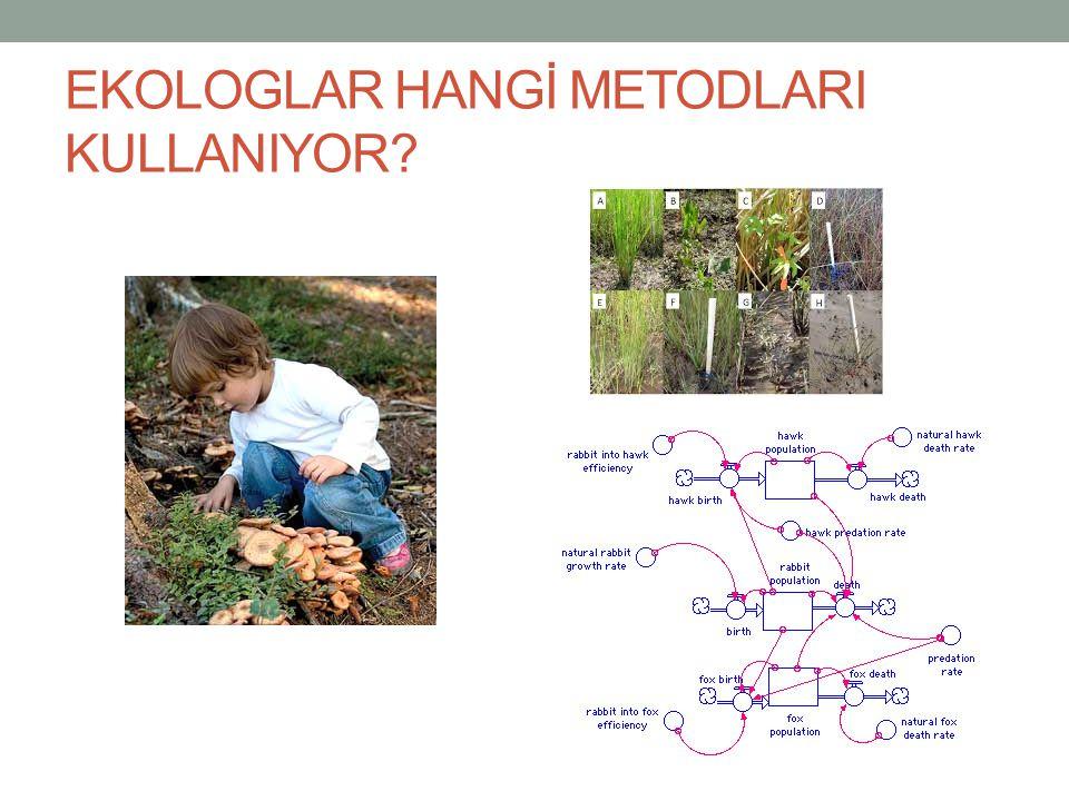 ÜRETİCİLER Enerji yoksa hayati faaliyet de olmaz Algler, bazı bakteriler ve yeşil bitkiler Ototroflar Fotosentez ve Kemosentez