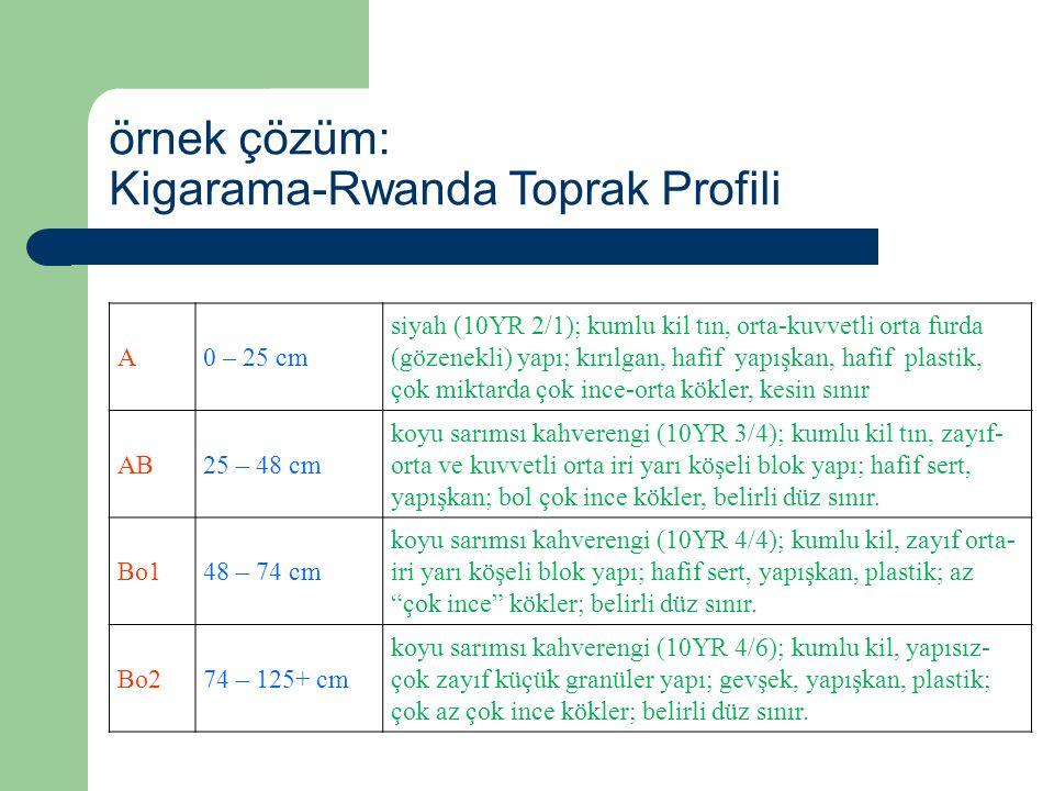 örnek çözüm: Kigarama-Rwanda Toprak Profili A0 – 25 cm siyah (10YR 2/1); kumlu kil tın, orta-kuvvetli orta furda (gözenekli) yapı; kırılgan, hafif yap