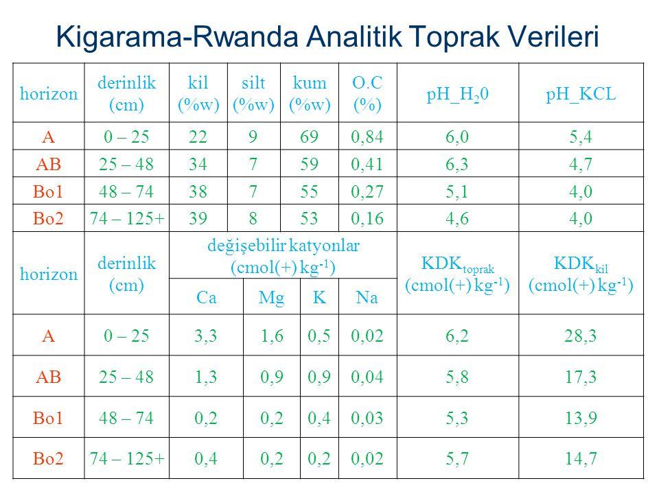 Kigarama-Rwanda Analitik Toprak Verileri horizon derinlik (cm) kil (%w) silt (%w) kum (%w) O.C (%) pH_H 2 0pH_KCL A0 – 25229690,846,05,4 AB25 – 483475