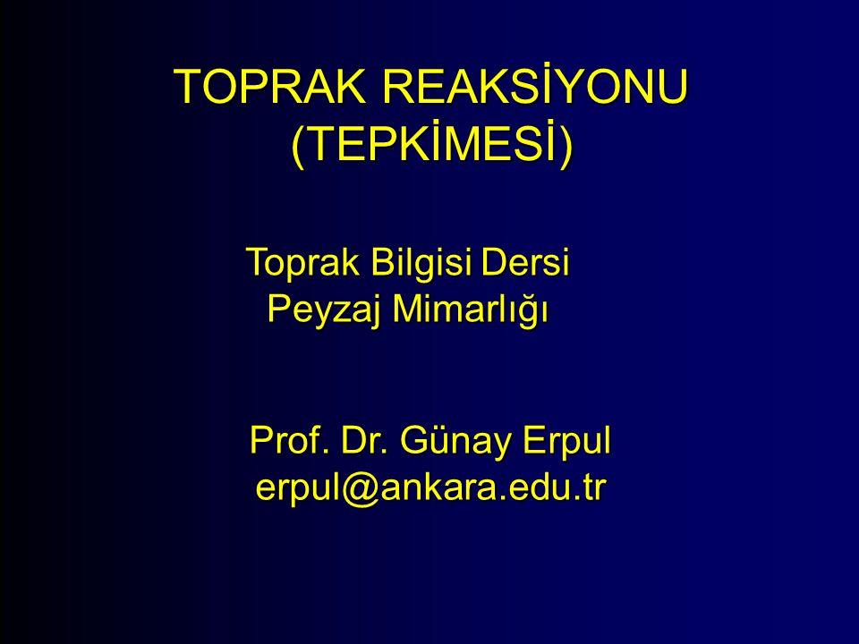 TOPRAK REAKSİYONU (TEPKİMESİ) Toprak Bilgisi Dersi Peyzaj Mimarlığı Prof. Dr. Günay Erpul erpul@ankara.edu.tr
