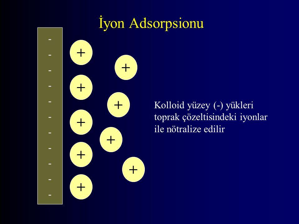 ---------------------- + + + + + + + + + İyon Adsorpsionu Kolloid yüzey (-) yükleri toprak çözeltisindeki iyonlar ile nötralize edilir