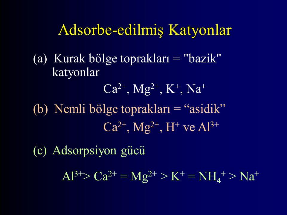 Adsorbe-edilmiş Katyonlar (a) Kurak bölge toprakları = bazik katyonlar Ca 2+, Mg 2+, K +, Na + (b) Nemli bölge toprakları = asidik Ca 2+, Mg 2+, H + ve Al 3+ (c) Adsorpsiyon gücü Al 3+ > Ca 2+ = Mg 2+ > K + = NH 4 + > Na +