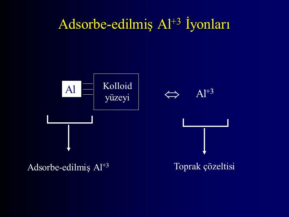 Adsorbe-edilmiş Al +3 İyonları Kolloid yüzeyi Al  Al +3 Adsorbe-edilmiş Al +3 Toprak çözeltisi