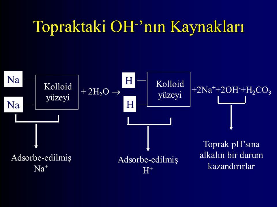 Topraktaki OH - 'nın Kaynakları Kolloid yüzeyi Na + 2H 2 O  H H +2Na + +2OH - +H 2 CO 3 Kolloid yüzeyi Adsorbe-edilmiş Na + Toprak pH'sına alkalin bi