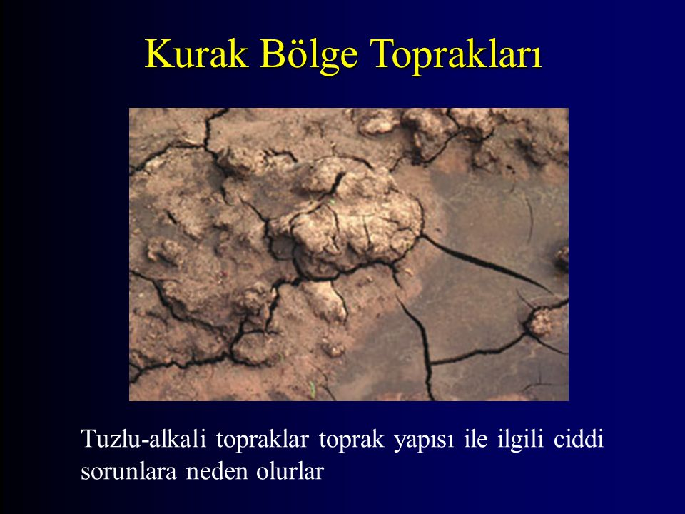 Tuzlu-alkali topraklar toprak yapısı ile ilgili ciddi sorunlara neden olurlar Kurak Bölge Toprakları