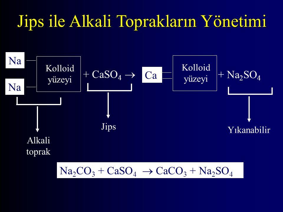 Jips ile Alkali Toprakların Yönetimi Kolloid yüzeyi Na + CaSO 4  Ca + Na 2 SO 4 Kolloid yüzeyi Alkali toprak Yıkanabilir Jips Na Na 2 CO 3 + CaSO 4  CaCO 3 + Na 2 SO 4