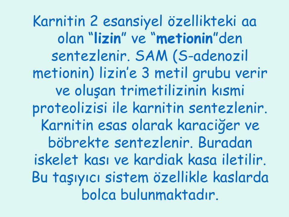 """Karnitin 2 esansiyel özellikteki aa olan """"lizin"""" ve """"metionin""""den sentezlenir. SAM (S-adenozil metionin) lizin'e 3 metil grubu verir ve oluşan trimeti"""