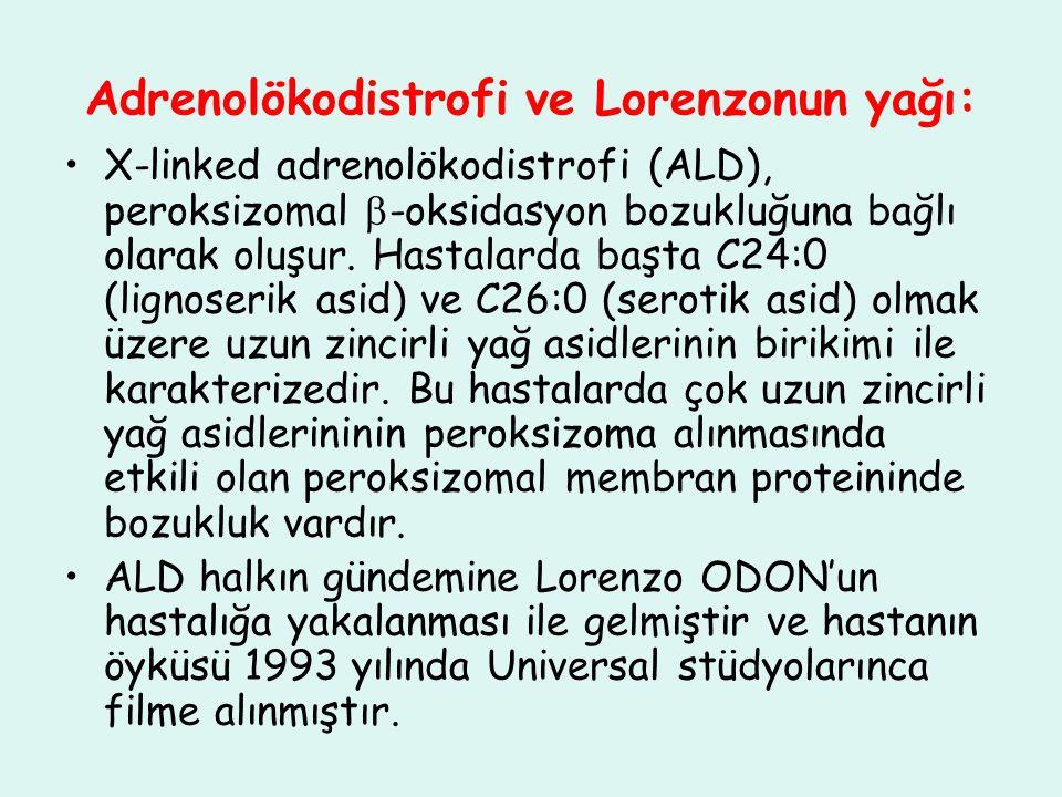 Adrenolökodistrofi ve Lorenzonun yağı: X-linked adrenolökodistrofi (ALD), peroksizomal  -oksidasyon bozukluğuna bağlı olarak oluşur. Hastalarda başta