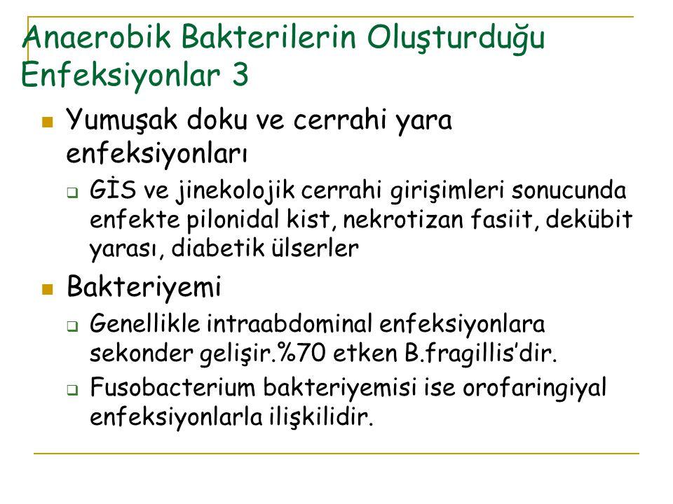 Anaerobik Bakterilerin Oluşturduğu Enfeksiyonlar 3 Yumuşak doku ve cerrahi yara enfeksiyonları  GİS ve jinekolojik cerrahi girişimleri sonucunda enfe