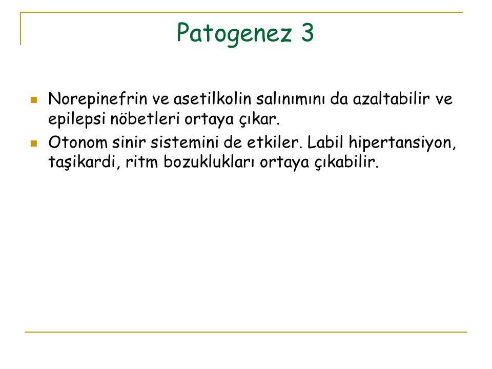 Patogenez 3 Norepinefrin ve asetilkolin salınımını da azaltabilir ve epilepsi nöbetleri ortaya çıkar. Otonom sinir sistemini de etkiler. Labil hiperta