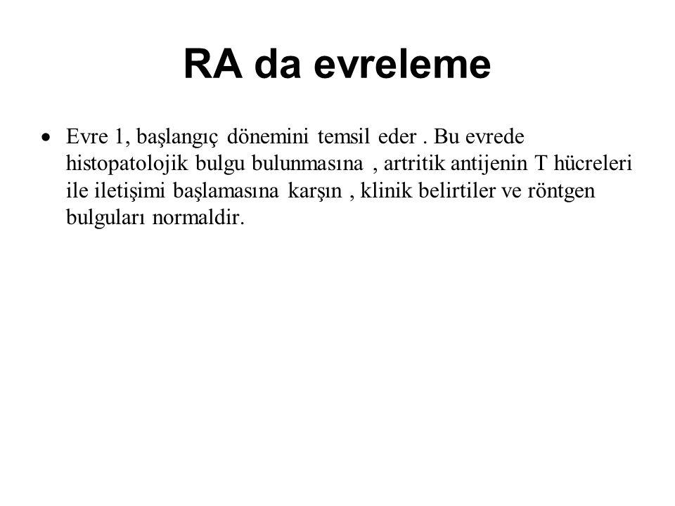 RA da evreleme  Evre 1, başlangıç dönemini temsil eder. Bu evrede histopatolojik bulgu bulunmasına, artritik antijenin T hücreleri ile iletişimi başl