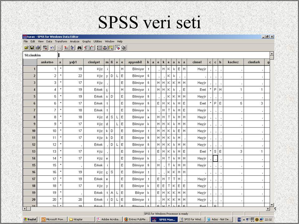 / 3530 SPSS veri seti