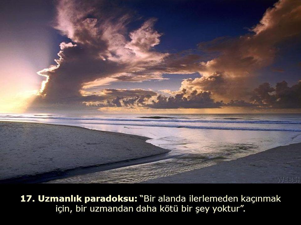 """16. Sükut paradoksu: """"Sükut, en güçlü çığlıktır"""" (Shopenhauer)."""