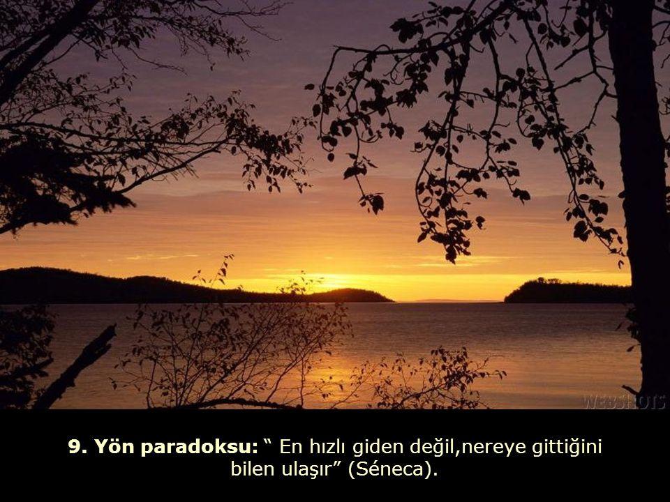 19. Sevgi paradoksu: Seni seven, sana acı çektirir .