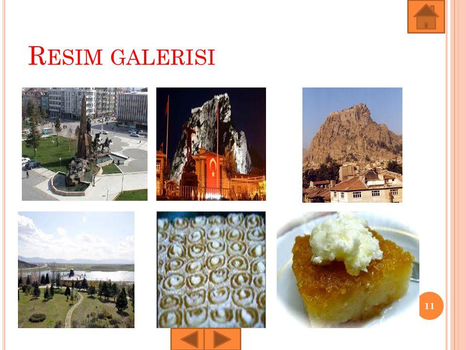 R ESIM GALERISI 11