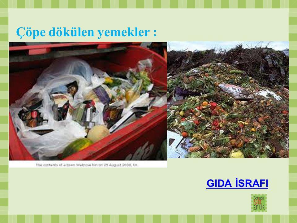 Çöpe dökülen yemekler : GIDA İSRAFI