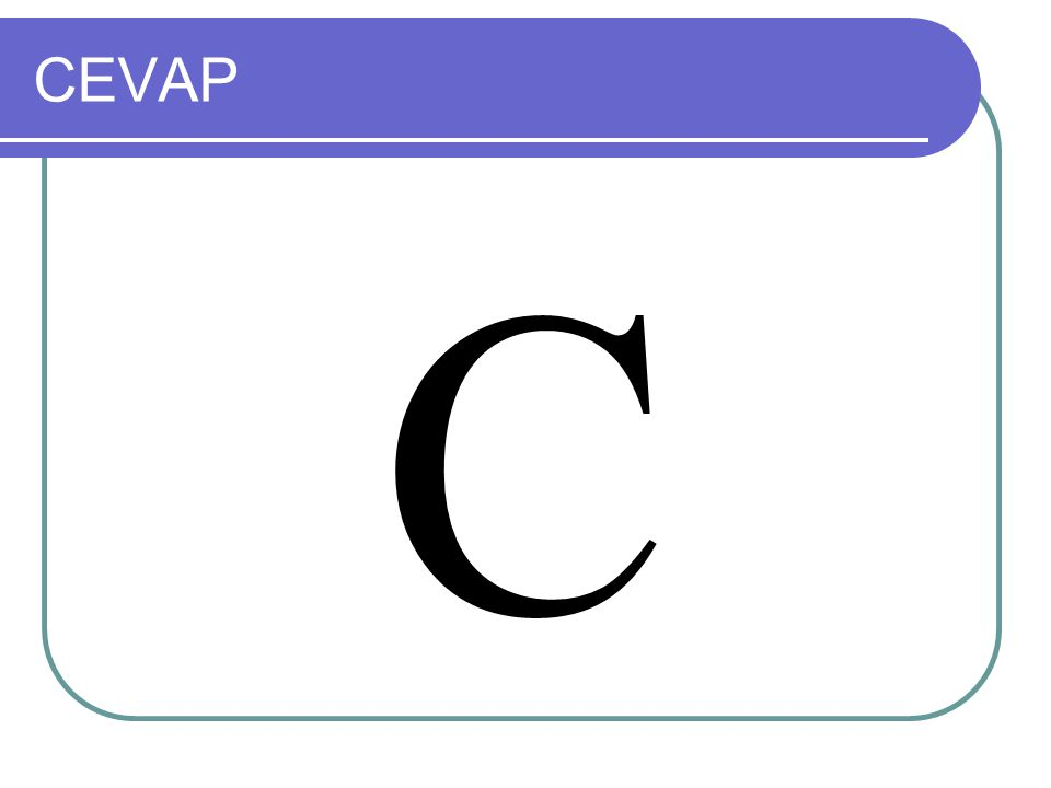 CEVAP C