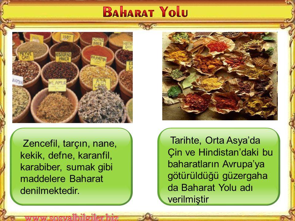 Zencefil, tarçın, nane, kekik, defne, karanfil, karabiber, sumak gibi maddelere Baharat denilmektedir.