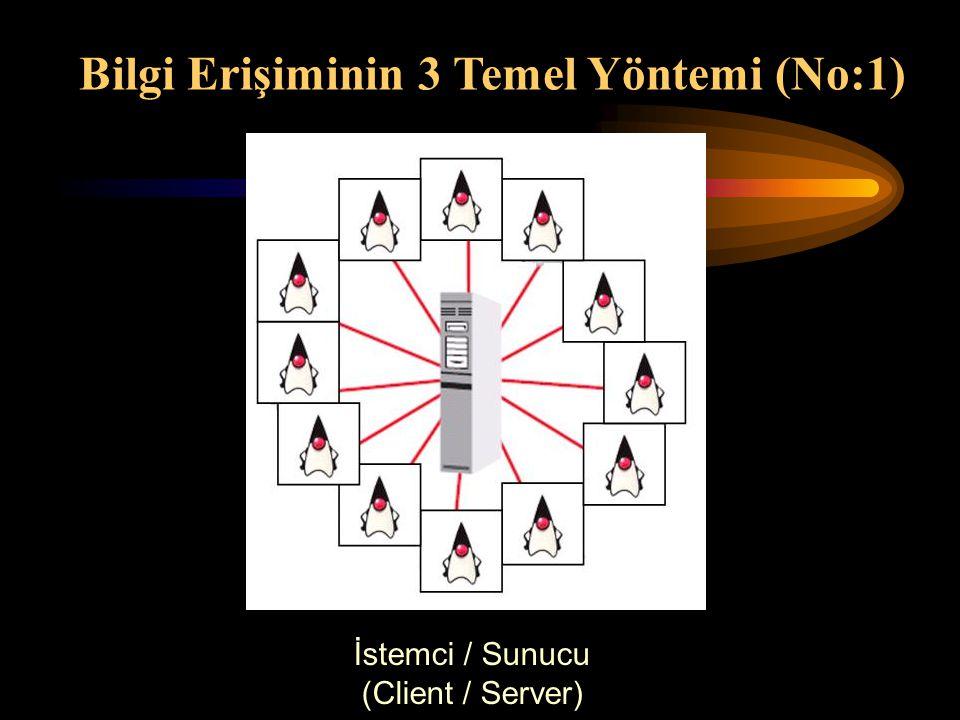 İstemci / Sunucu (Client / Server) Bilgi Erişiminin 3 Temel Yöntemi (No:1)