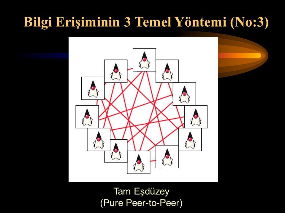 Tam Eşdüzey (Pure Peer-to-Peer) Bilgi Erişiminin 3 Temel Yöntemi (No:3)