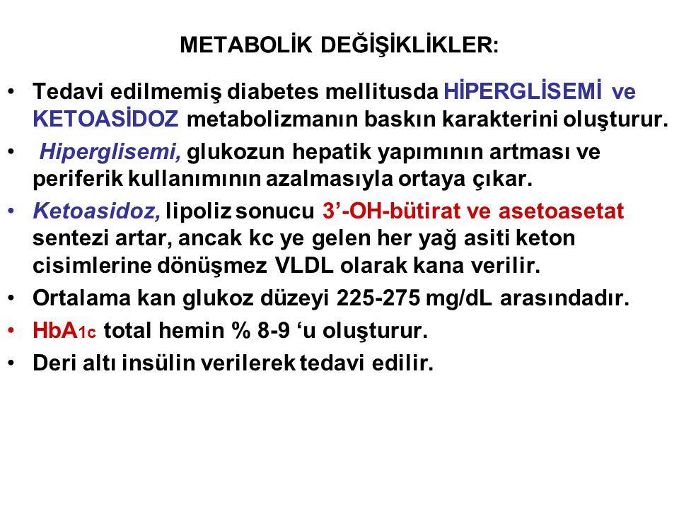 METABOLİK DEĞİŞİKLİKLER: Tedavi edilmemiş diabetes mellitusda HİPERGLİSEMİ ve KETOASİDOZ metabolizmanın baskın karakterini oluşturur. Hiperglisemi, gl