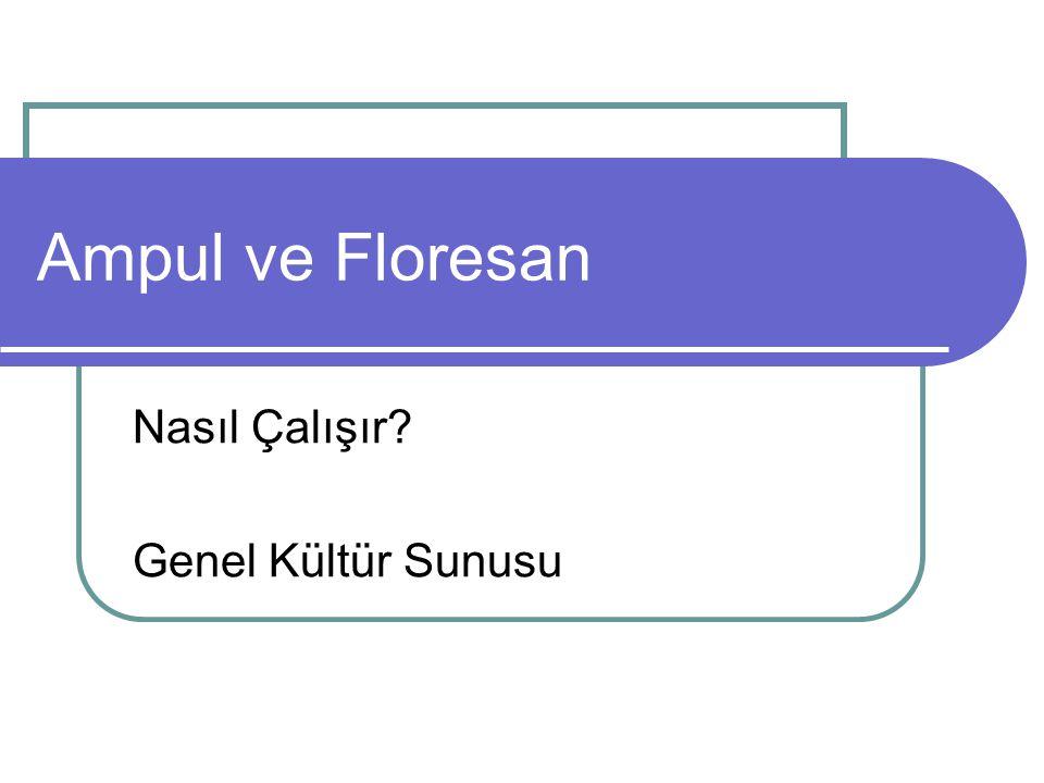 Ampul ve Floresan Nasıl Çalışır? Genel Kültür Sunusu