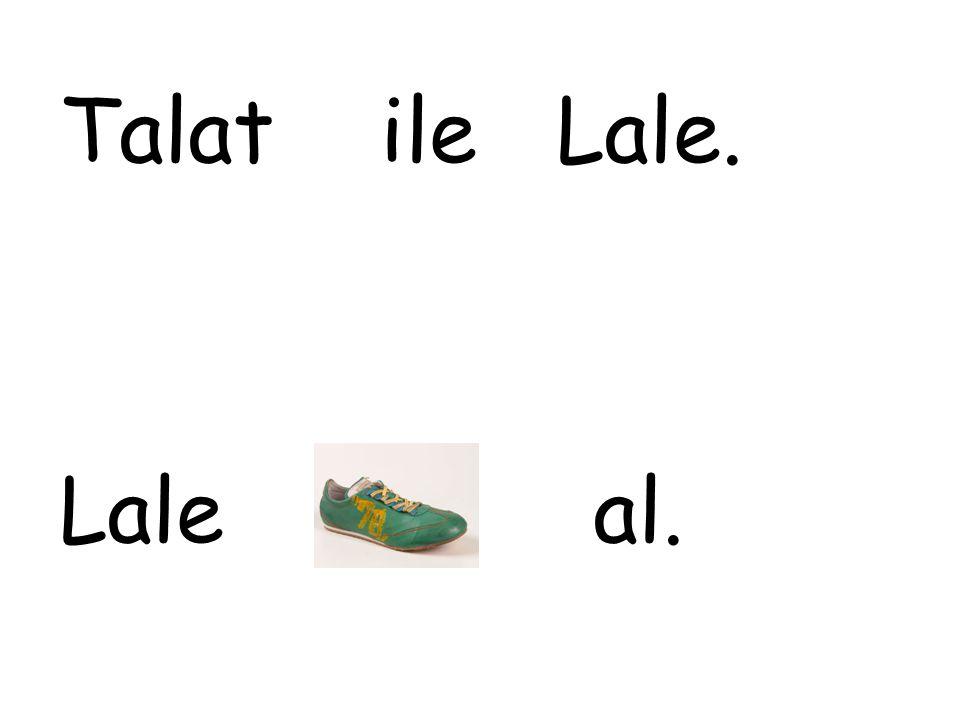 Talat ile Lale. Lale al.