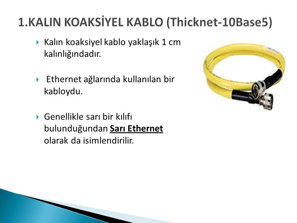  Kalın koaksiyel kablo yaklaşık 1 cm kalınlığındadır.  Ethernet ağlarında kullanılan bir kabloydu.  Genellikle sarı bir kılıfı bulunduğundan Sarı E
