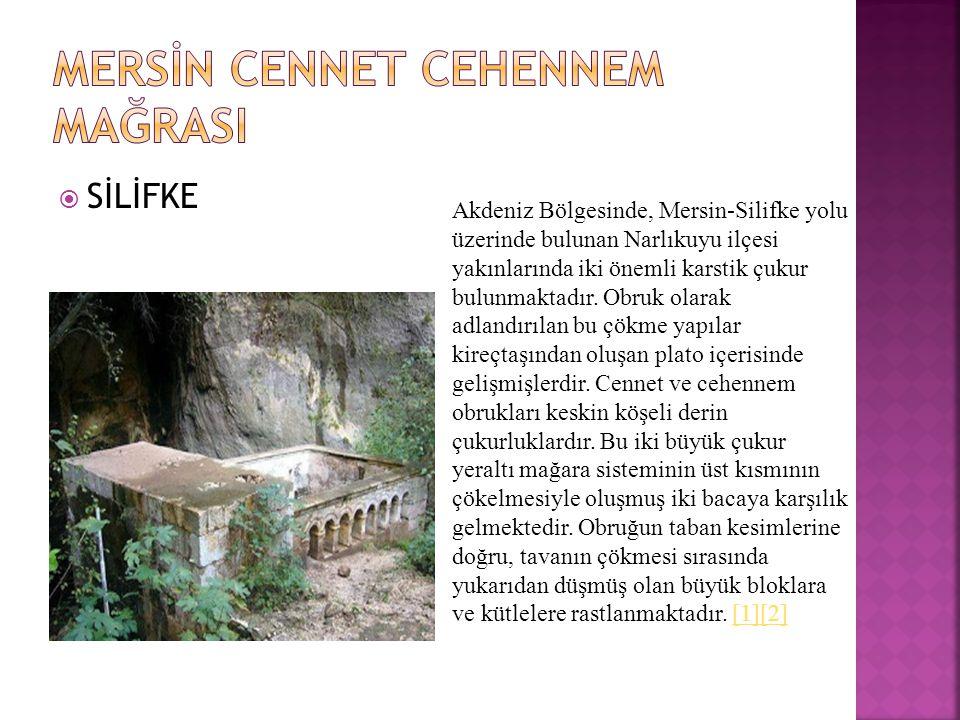  SİLİFKE Akdeniz Bölgesinde, Mersin-Silifke yolu üzerinde bulunan Narlıkuyu ilçesi yakınlarında iki önemli karstik çukur bulunmaktadır.
