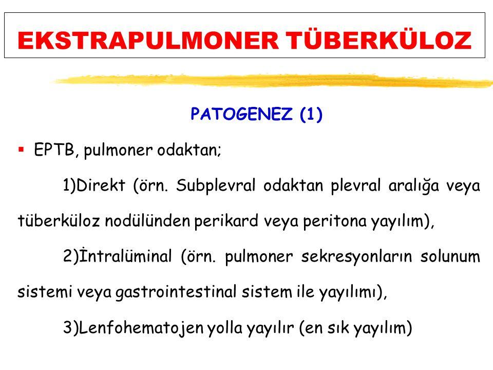 EKSTRAPULMONER TÜBERKÜLOZ PATOGENEZ (1)  EPTB, pulmoner odaktan; 1)Direkt (örn.