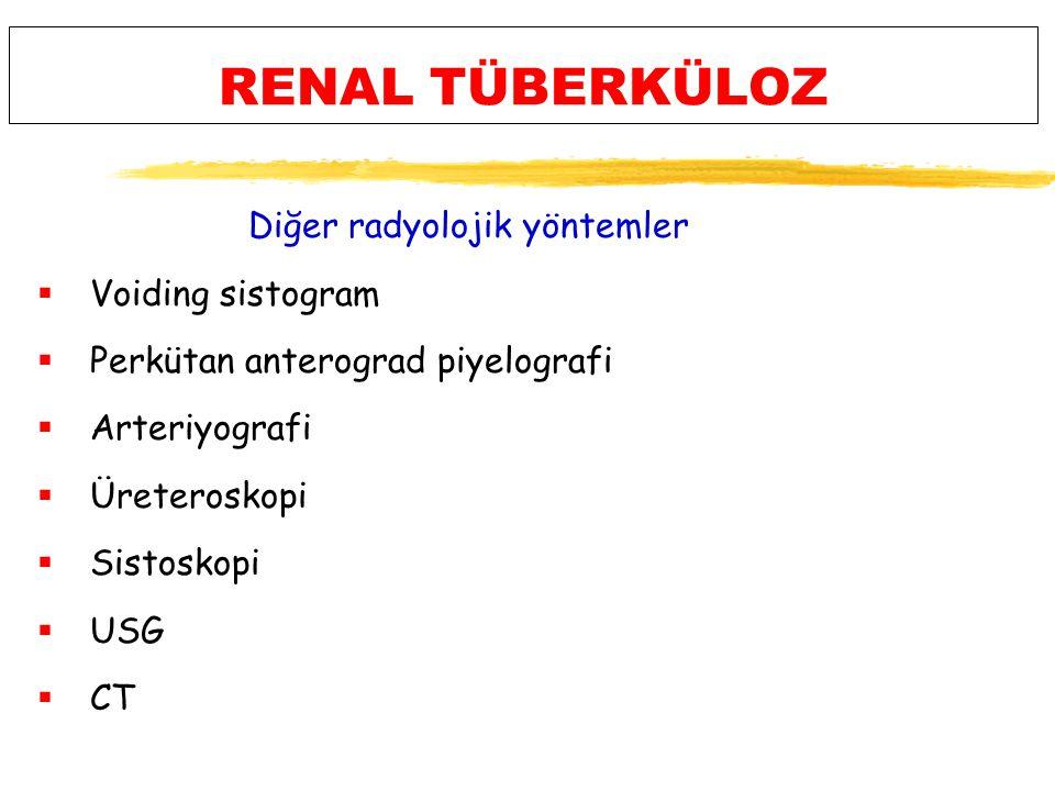 RENAL TÜBERKÜLOZ Diğer radyolojik yöntemler  Voiding sistogram  Perkütan anterograd piyelografi  Arteriyografi  Üreteroskopi  Sistoskopi  USG  CT