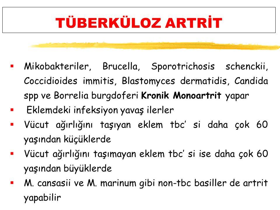 TÜBERKÜLOZ ARTRİT  Mikobakteriler, Brucella, Sporotrichosis schenckii, Coccidioides immitis, Blastomyces dermatidis, Candida spp ve Borrelia burgdoferi Kronik Monoartrit yapar  Eklemdeki infeksiyon yavaş ilerler  Vücut ağırlığını taşıyan eklem tbc' si daha çok 60 yaşından küçüklerde  Vücut ağırlığını taşımayan eklem tbc' si ise daha çok 60 yaşından büyüklerde  M.