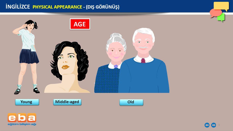 3 AGE İNGİLİZCE PHYSICAL APPEARANCE - (DIŞ GÖRÜNÜŞ) Young Middle-aged Old