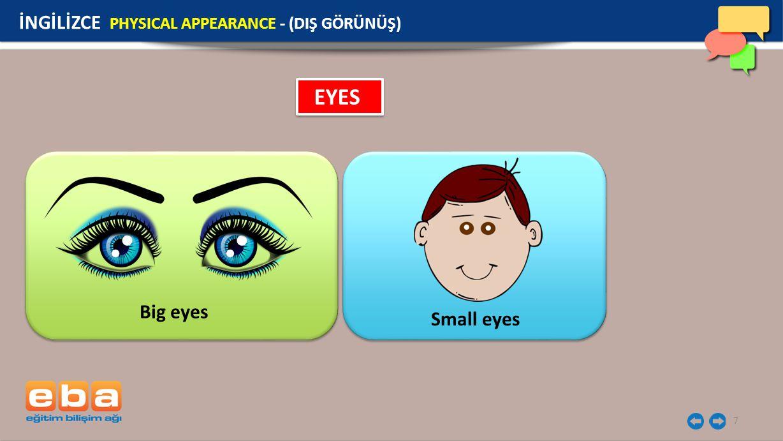 7 EYES Big eyes Small eyes İNGİLİZCE PHYSICAL APPEARANCE - (DIŞ GÖRÜNÜŞ)