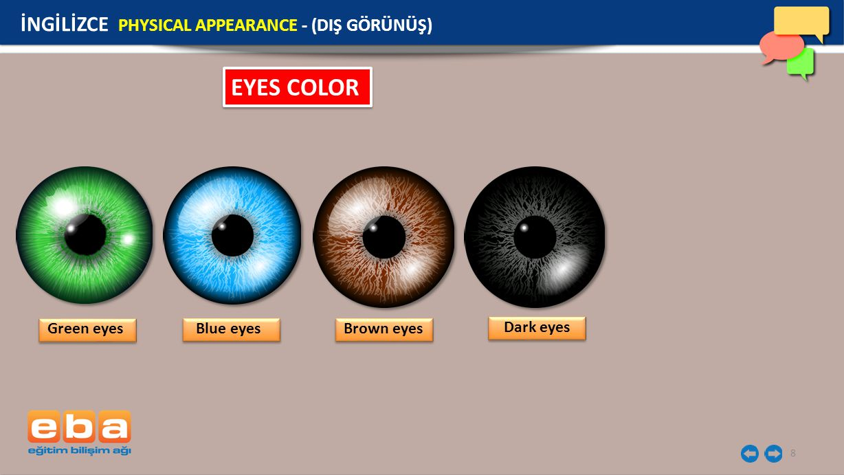 8 EYES COLOR Green eyes İNGİLİZCE PHYSICAL APPEARANCE - (DIŞ GÖRÜNÜŞ) Blue eyes Brown eyes Dark eyes