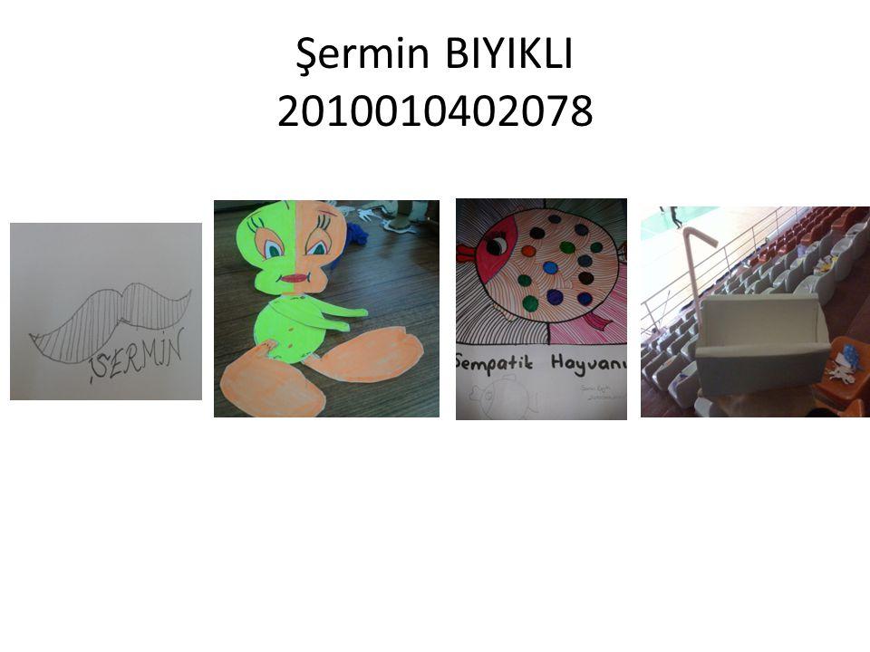 Şermin BIYIKLI 2010010402078
