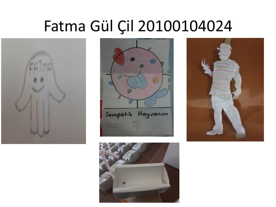 Fatma Gül Çil 20100104024