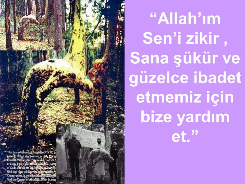 """""""Allah'ım Sen'i zikir, Sana şükür ve güzelce ibadet etmemiz için bize yardım et."""""""
