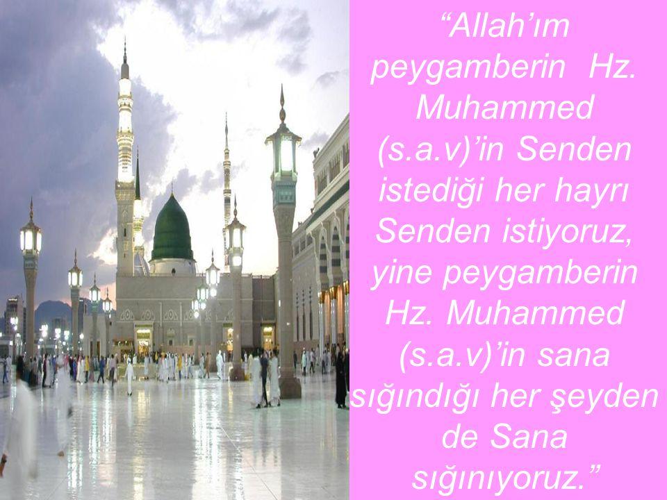 """""""Allah'ım peygamberin Hz. Muhammed (s.a.v)'in Senden istediği her hayrı Senden istiyoruz, yine peygamberin Hz. Muhammed (s.a.v)'in sana sığındığı her"""